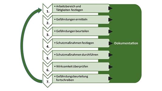 Diagramm Gefährdungsbeurteilung in 7 Schritten