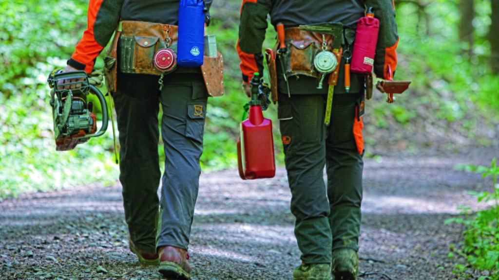 Männer gehen in den Wald mit Werkzeug und Motorsäge