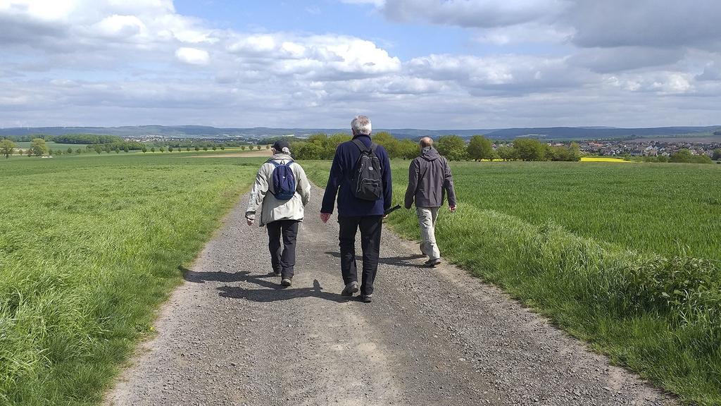 Drei Männer beim Wandern
