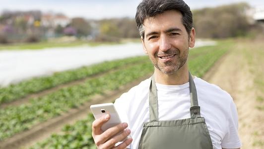 Mann mit Handy auf dem Feld