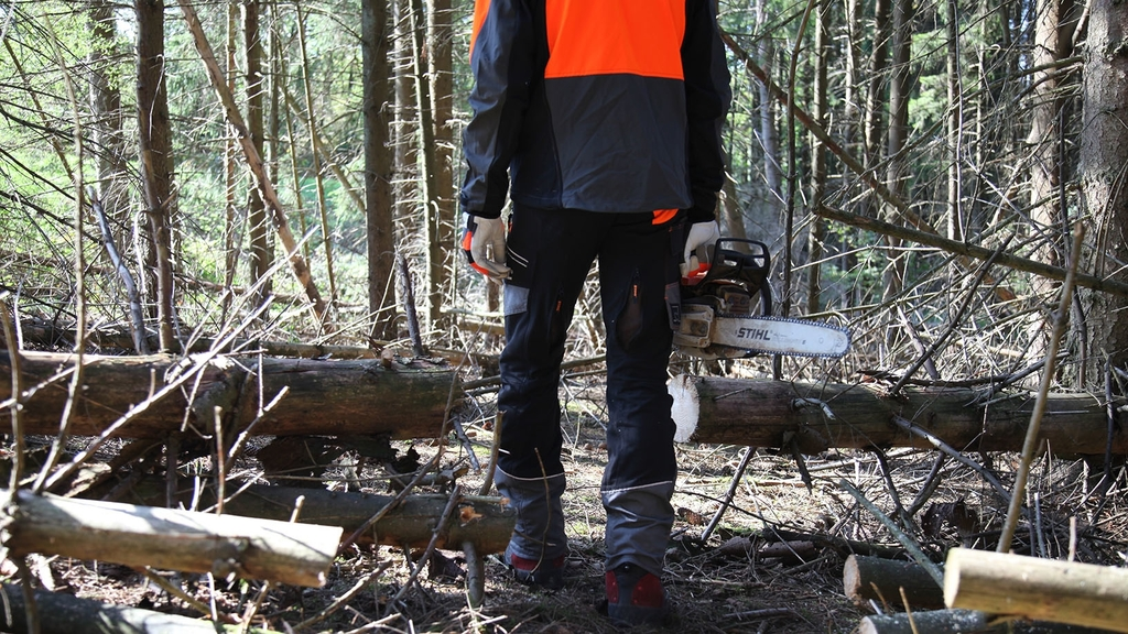 Forstarbeiter steht mit Kettensäge im Wald wo sich viel Schadholz befindet
