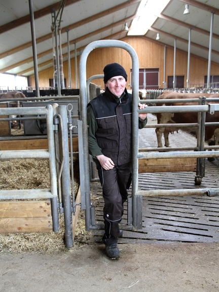 Bild: Tierwirt demonstriert durchgehende Personenschlupfmöglichkeit im Rinderstall