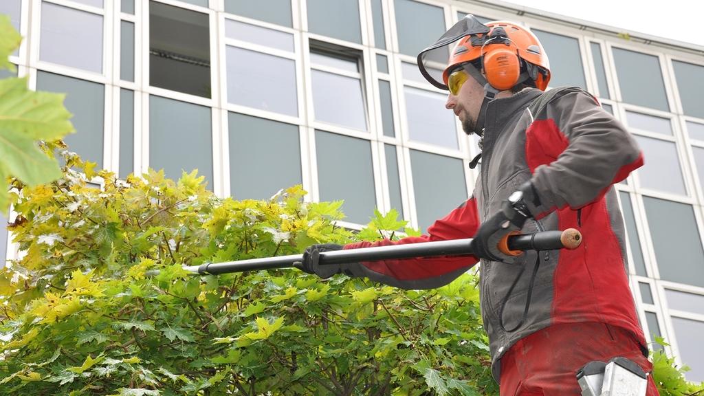 Mann in Persönlicher Schutzausrüstung schneidet einen Baum in luftiger Höhe