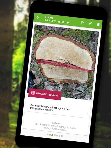 """Baumrinde auf einem Handy Display zu sehen. Drunter steht """"Ergebnis"""". Es ist ein Abbild der Stockfibel App."""