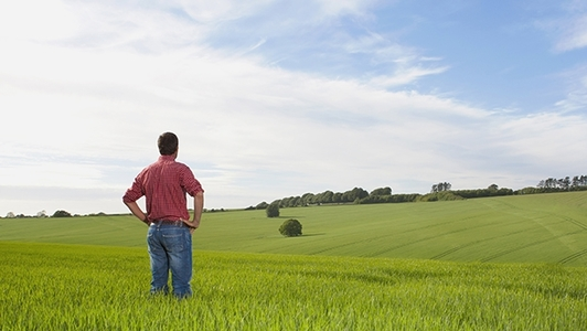 Mann im Feld