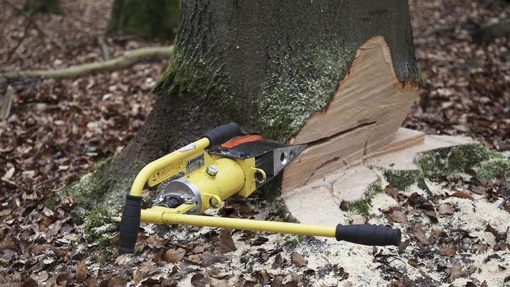 Technischer Fällkeil am Baumstamm angebracht