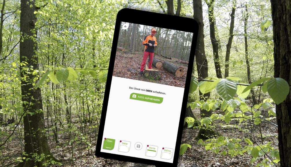 Mann im Wald auf Handy Display zu sehen