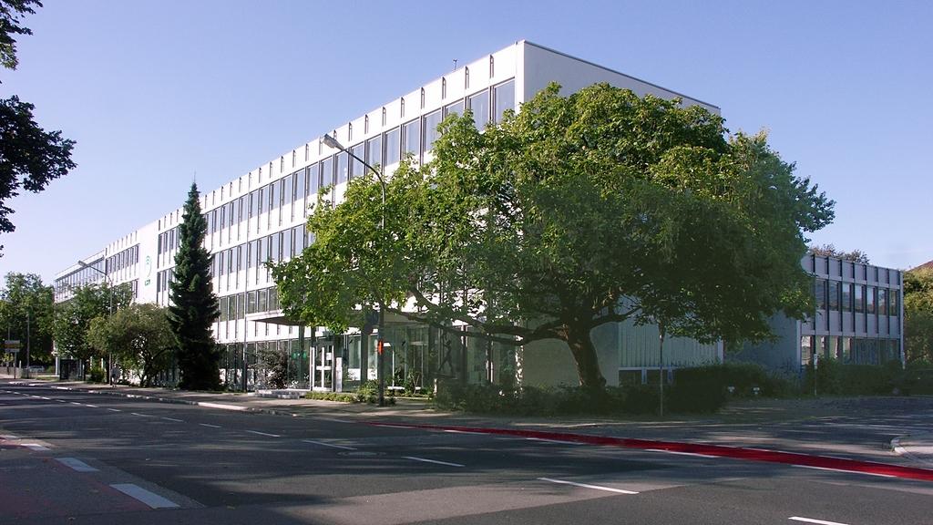 Aufnahme des Bürogebäudes in Speyer mit grün belaubtem Baum im Vordergrund