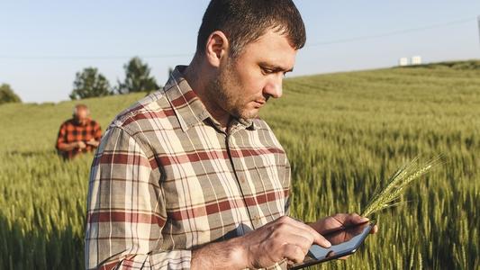 Bauer mit Tablet auf dem Feld