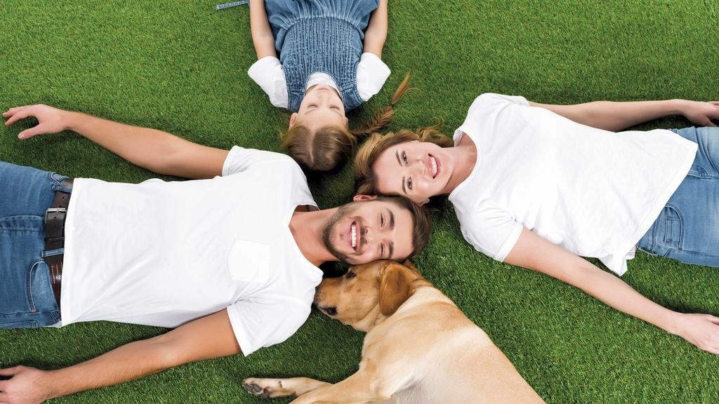 Familie mit Hund sternförmig im Gras liegend