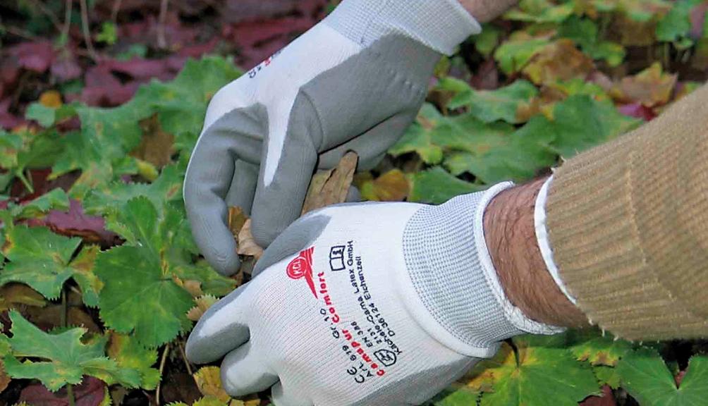 Hände mit Schutzhandschuhen bei der Gartenarbeit