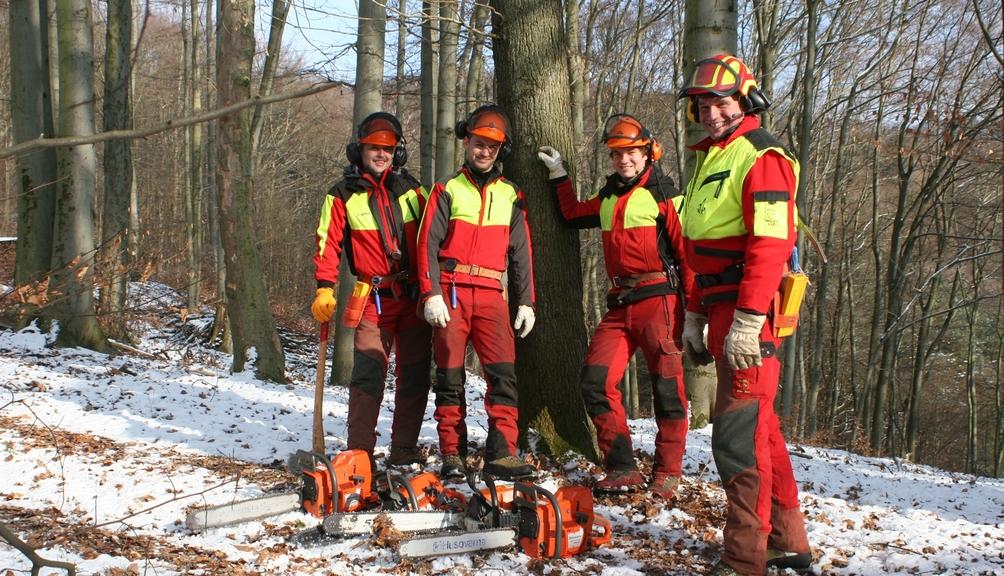 Bild: Vier Waldarbeiter mit kompletter Schutzkleidung im Wald