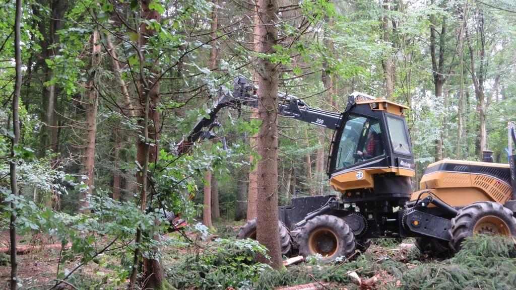 Sturmschäden mit Harvester beseitigen