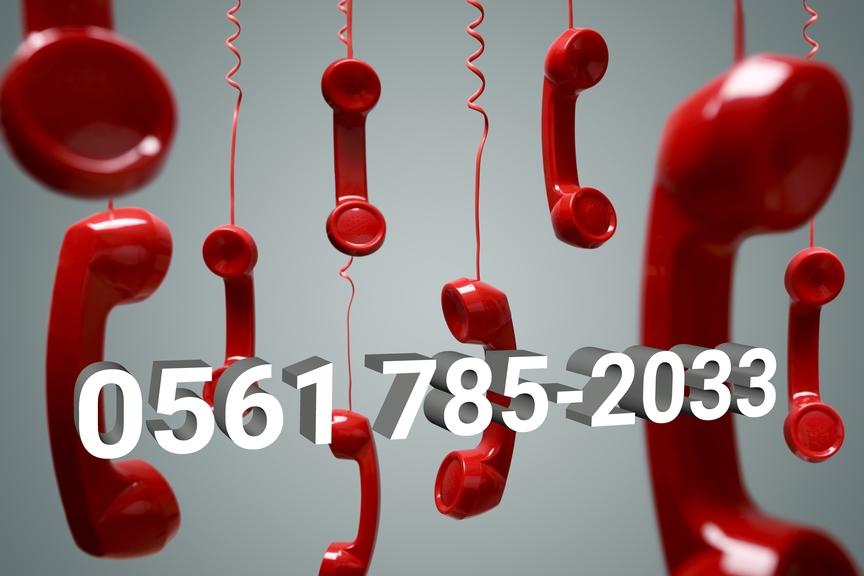 rote Telefonhörer mit Telefonnummer Pflegehotline