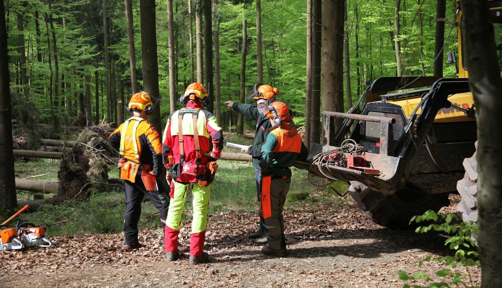 Drei Forstarbeiter in PSA werden in ihre Arbeit eingewiesen im Wald. Daneben steht die Forstmaschine.