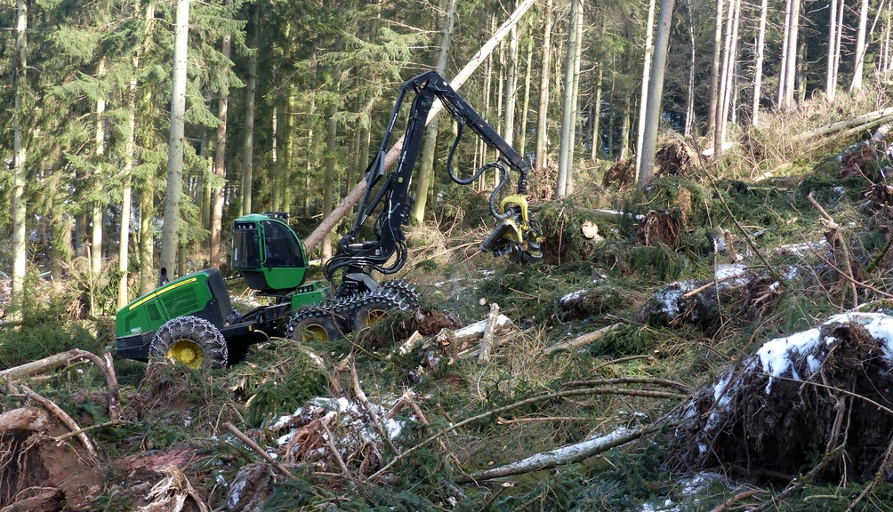 Eine Forstraupe für Fäll- und Rückearbeiten im Wald aus.