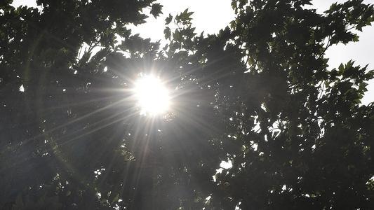 Gleissende Sonne