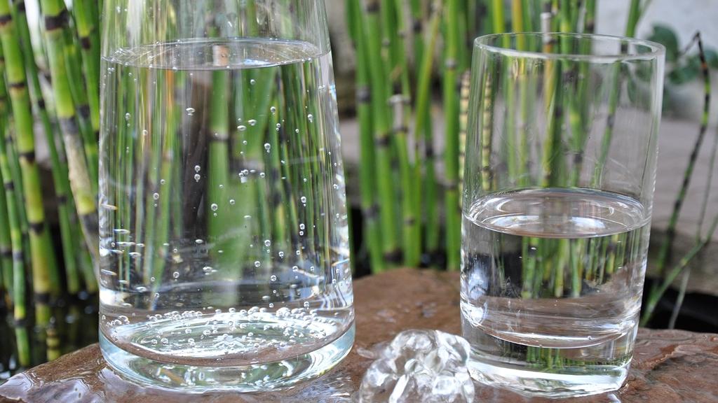 Glaskaraffe und Glas mit Wasser gefüllt, im Hintergrund Bambuspflanzen