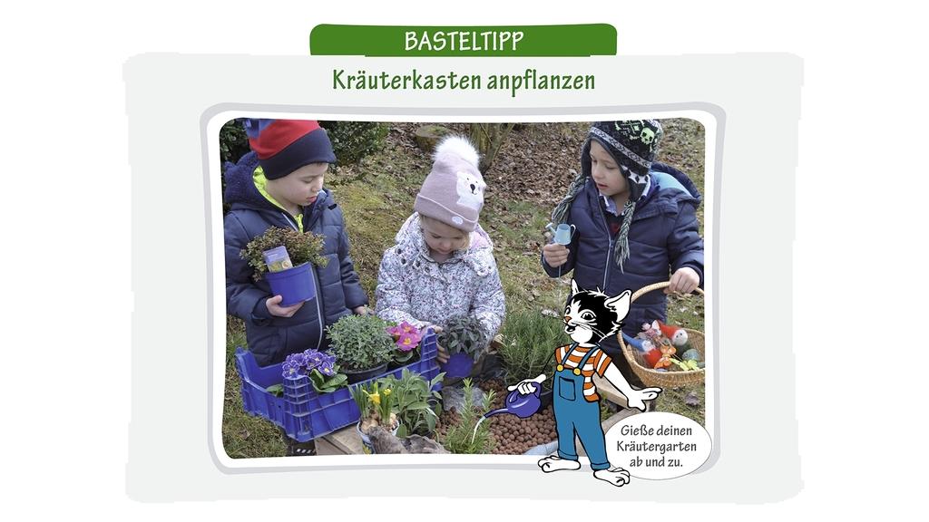 Kinder pflanzen einen Kräuterkasten an