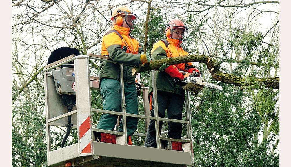 Bild: Zwei Personen mit Schutzkleidung beim Motorsägeneinsatz in einer Hubarbeitsbühne