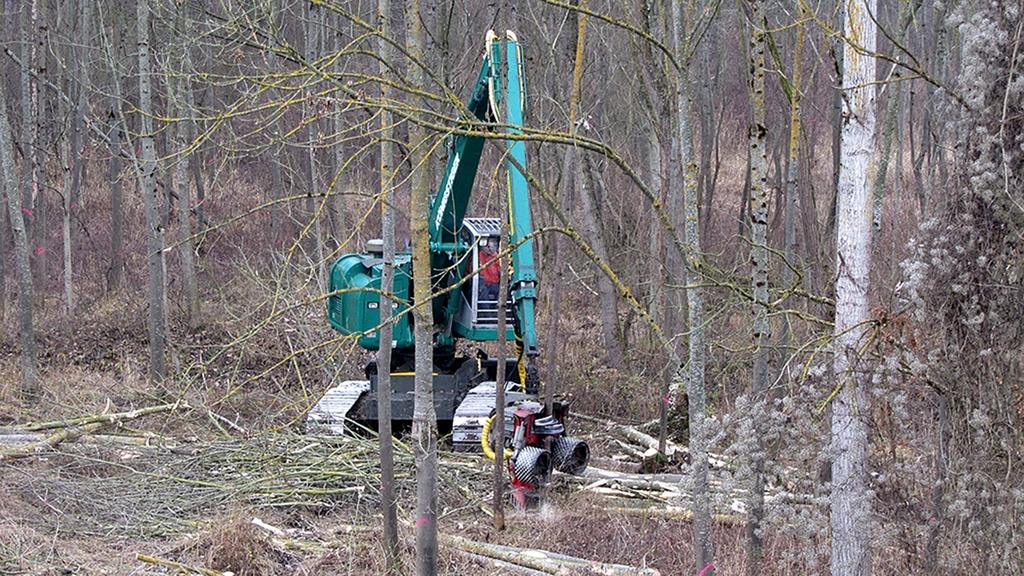 Eine Maschine fährt durch den Wald.