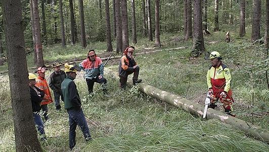 Verhaltensprävention im Forst
