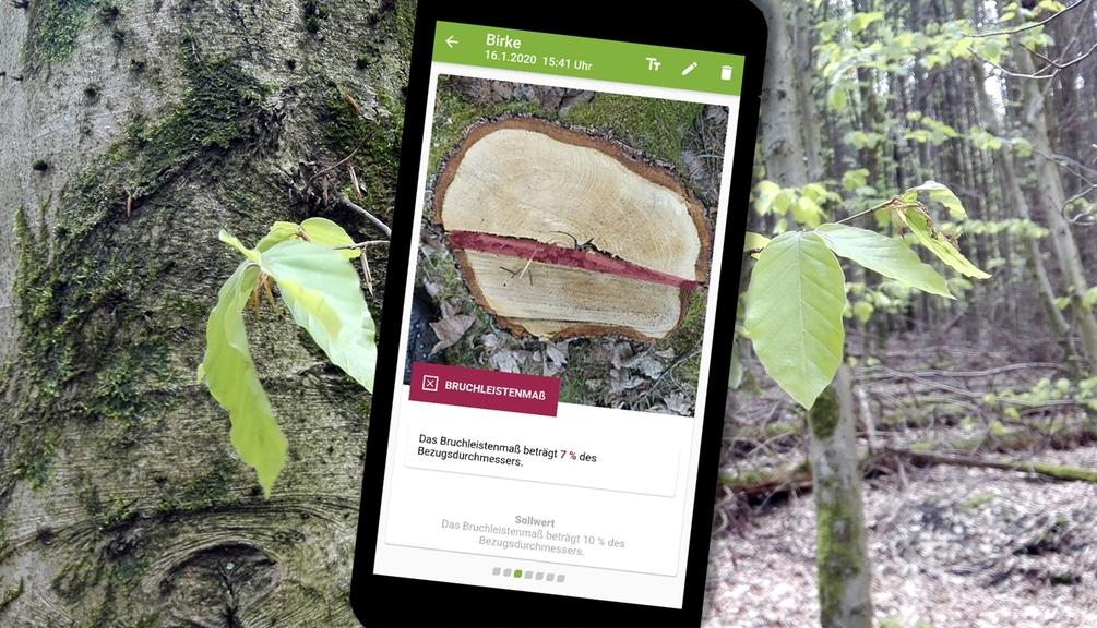 Stockfibel App auf einem Handy Display zu sehen