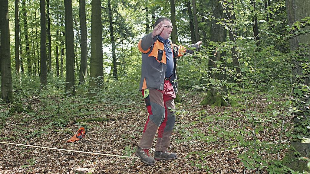 Mann balanciert im Wald auf einer zwischen zwei Bäumen gespannten Slackline.